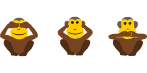 monkeys pixabay free